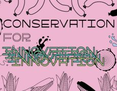 Conservation for Innovation