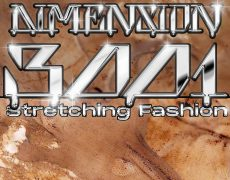 Dimension 3001 – Stretching Fashion